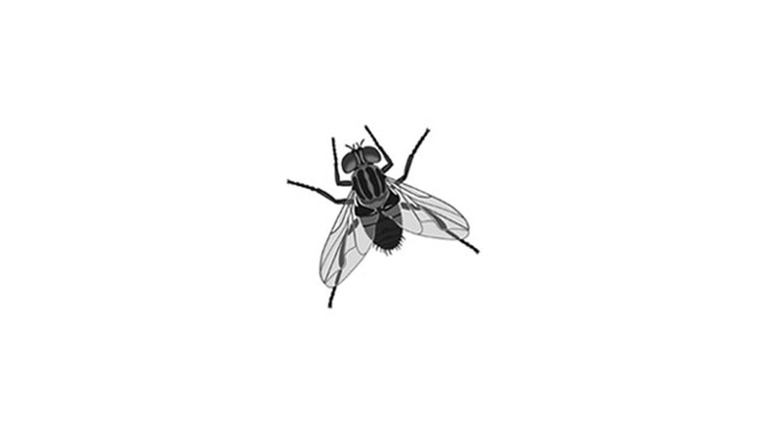 When is a fly not a pest? When it keeps your floor clean.