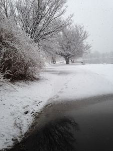 """I briefly broke my """"no standing around"""" rule to take this picture on a run last winter; this is not a black-and-white photo."""