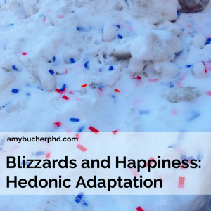 Blizzards and Happiness- Hedonic