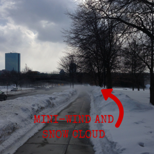 It's not as easy to see in the photo as it was in real life--there's a snow cloud being kicked up by the wind ahead of me on the path.