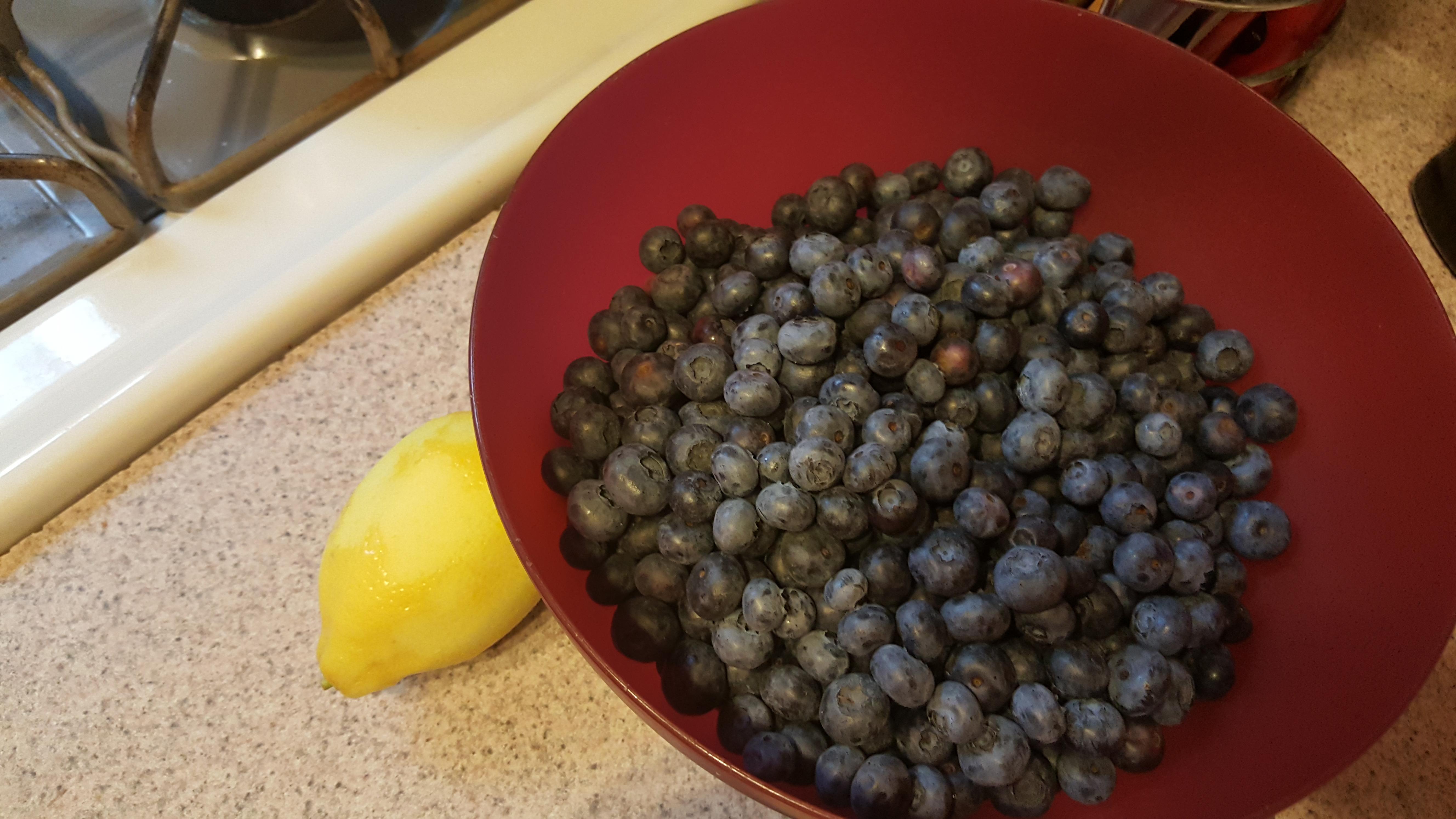 Recipe Blueberry Lemon Crumb Bars From Smitten Kitchen Amy Bucher