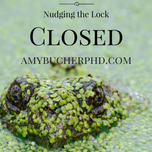 Nudging the Lock