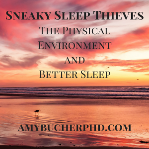 Sneaky Sleep Thieves