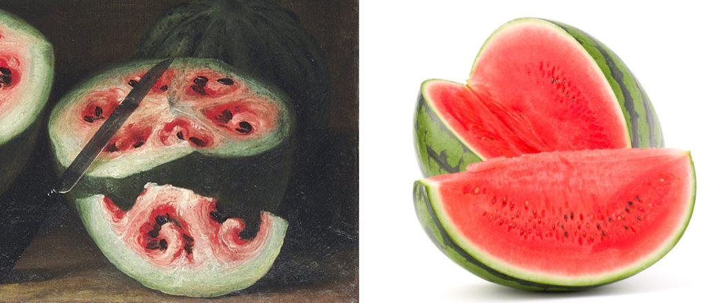 Watermelons back in the day (left) and modern times (right). Courtesy of genetic modification. Image from http://www.vox.com/2015/7/28/9050469/watermelon-breeding-paintings